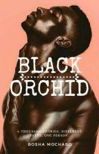 Black Orchid Diaries  by Bosha56