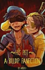 ~His Pet~ (Billdip Fanfiction) by amrych
