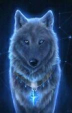 Meine Freundin der Wolf by Katu_der_Keks