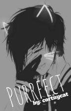 ρυяяfє¢т (Yandere neko x reader) by cortnycat