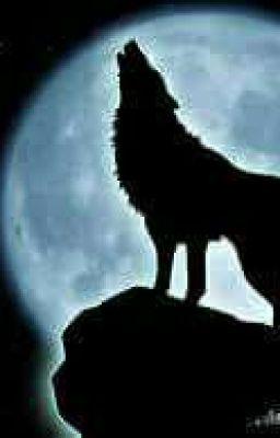 (12 chòm sao) Ma sói