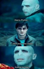 Harry Potter Funny Pictures  by Mini-Luna