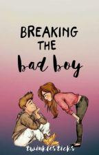 BREAKING THE BAD BOY by twinklesticks