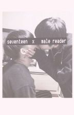 Seventeen X Male Reader (oneshots) by MergingSpace