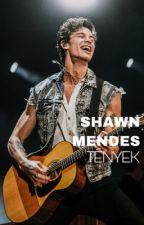   Shawn Mendes tények   by PetraPhotographer