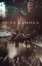 Maze Runner. - Newt y tu-.  by andy_grazer