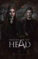 VOICES IN MY HEAD→SPN FT. TW by davmina