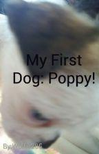 My First Dog Story: Poppy! by Wolfie285