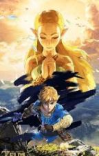 BOTW x Reader Oneshots by Fitira