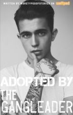 adopted by a gangleader [ON GOING] (editting) by whatsstrange