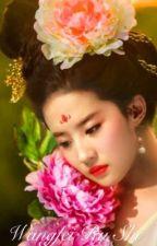 Wangfei Ru Shi by loveestory21