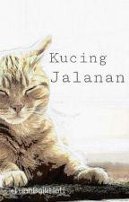 Kucing Jalanan by -TuanBaikHati