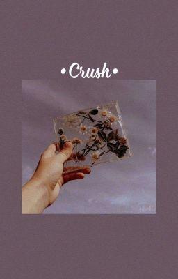 Crush - Bâm