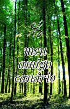 Meu Amigo Canário by eduardosegundo