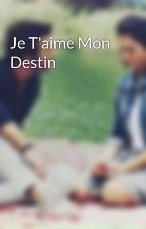 Je T'aime Mon Destin by salsalomi