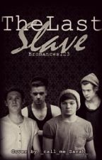 The last slave  [Larry / Niam] by Bromances123
