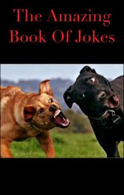 The Amazing Book of Jokes by Smalls365