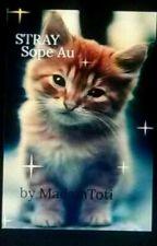 STRAY (Sope Au) by Leonalielee