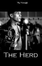 THE HERD || Stephen James by Nadiaffff