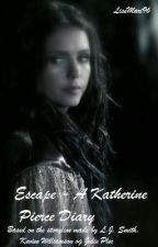 Escape - A Katherine Pierce Diary by LiseMari96