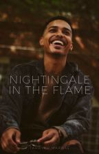 Nightingale in the Flame   March by sunflowerings