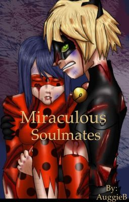 When It's True | Miraculous Ladybug Fanfic Book 2 DisContinued