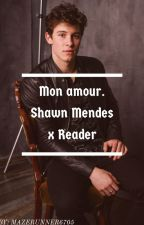 Mon amour. (Shawn Mendes x reader) by Allysaurus6705