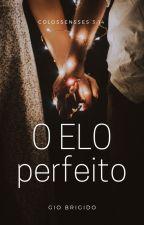 O Elo Perfeito by Giovanna_Brigido
