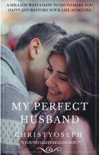 My Perfect Husband by christyoseph