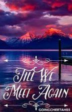 Till We Meet Again by GoingCheetah55