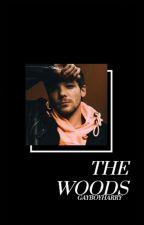 THE WOODS // TOMLINSON by gayboyharry