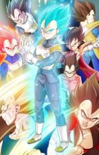 Vegeta's found mate by galaxy_kurama