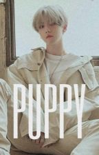 「Puppy」 - ChanBaek by UnBacon