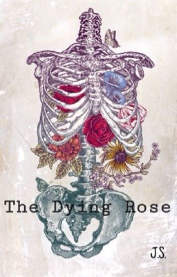The Dying Rose 🥀