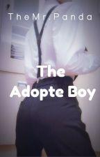 The Adopte Boy by Kuronikiforov