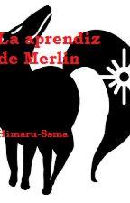 La aprendiz de Merlin. by Himaru-Sama