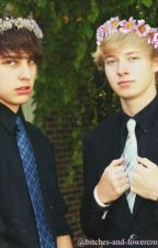 The Little Sister (Sam Golbach&Colby Brock) by unknown1234561