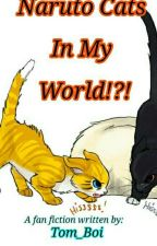 Naruto Cats In My World?!? by Tom_Boi