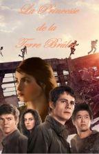 La Princesse du Labyrinthe (Film) by QuieroMinho