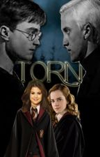 Torn [HP/WOWP] by ItsATwinThing