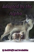 Adopted By The Alpha *under magor editing* by RockiWolf16