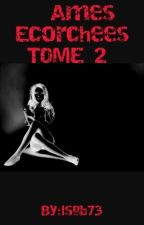 Ames Ecorchees TOME 2 ( Terminé) by lsgb73