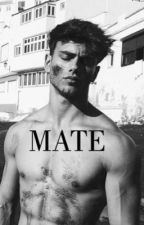 MATE by Angelsbadboy