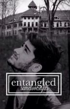 Entangled | Zayn Malik  by samelovestyles