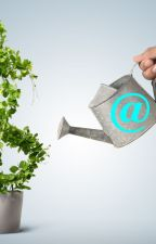 Industry Wise Email Lists | Industry Wise Mailing Lists | Mails Store by mailsstore