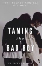 Taming the Bad Boy [BxB] by BL_Love