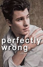 Perfectly Wrong || s.m. + c.c. by AllKindsOfShawn