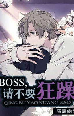 Boss, xin đừng nóng nảy - Tuyết Nguyên U Linh