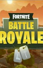 Fortnite Battle Royale (Terminer) by fiction57