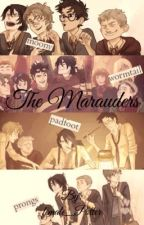 The Marauders ~ Preferences & OneShots by female_Potter